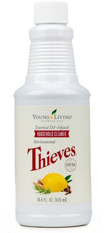 household-thieves-cleaner